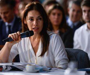 """Crexell calificó al presidente de """"inepto"""" ante el conflicto en el sur"""