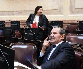 El Senado aprobó la extensión de la licencia de Alperovich hasta fin de año