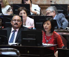Senadora salteña cuestionó al gobernador Sáenz por adelantar los comicios