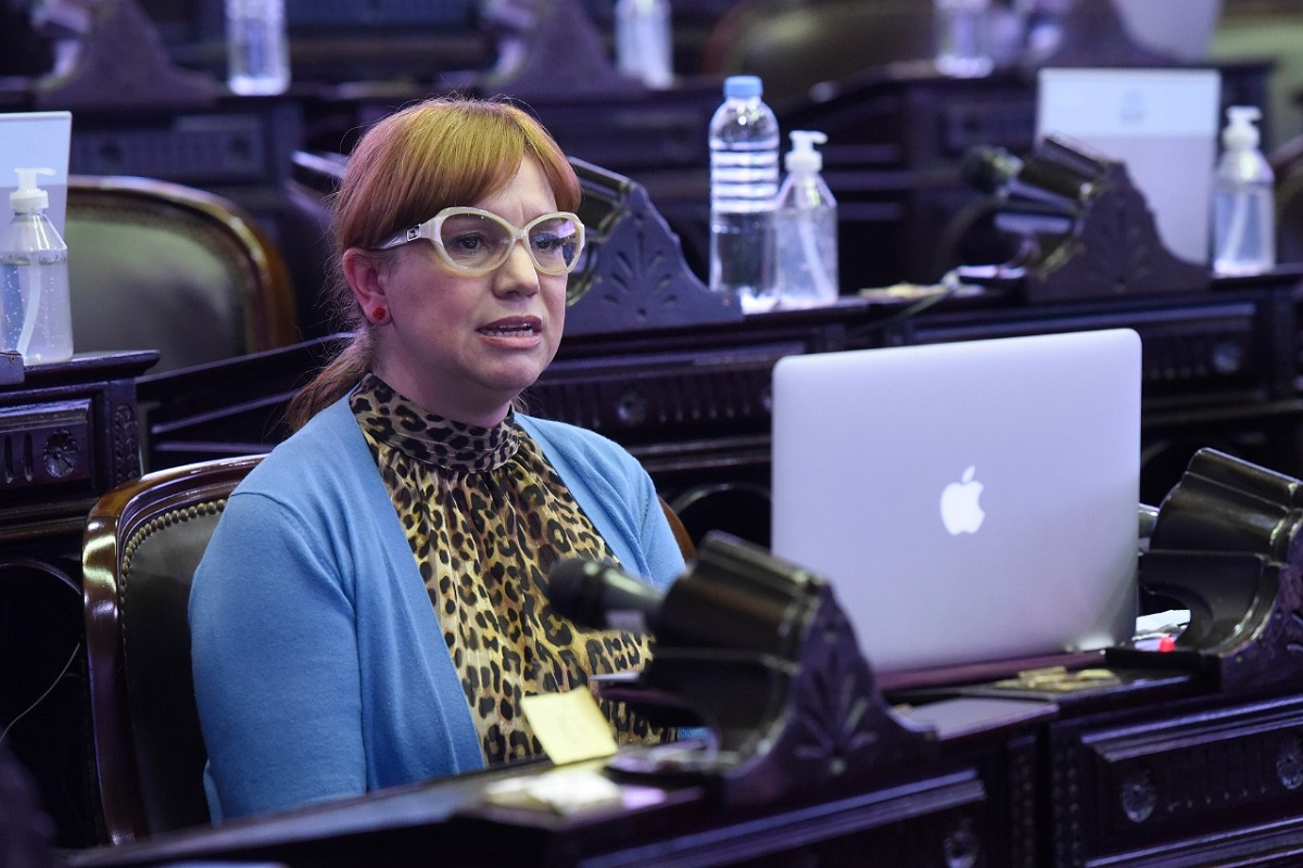 karina banfi ley economia del conocimiento sesion diputados