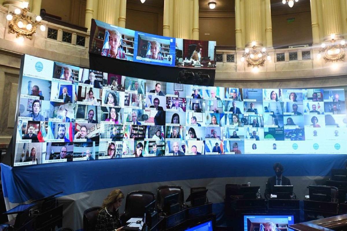 sesion virtual senado 30 julio 2020