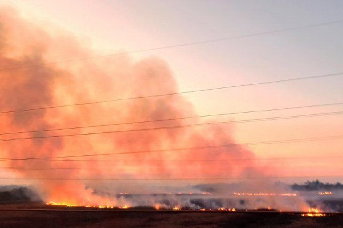 incendios delta del parana