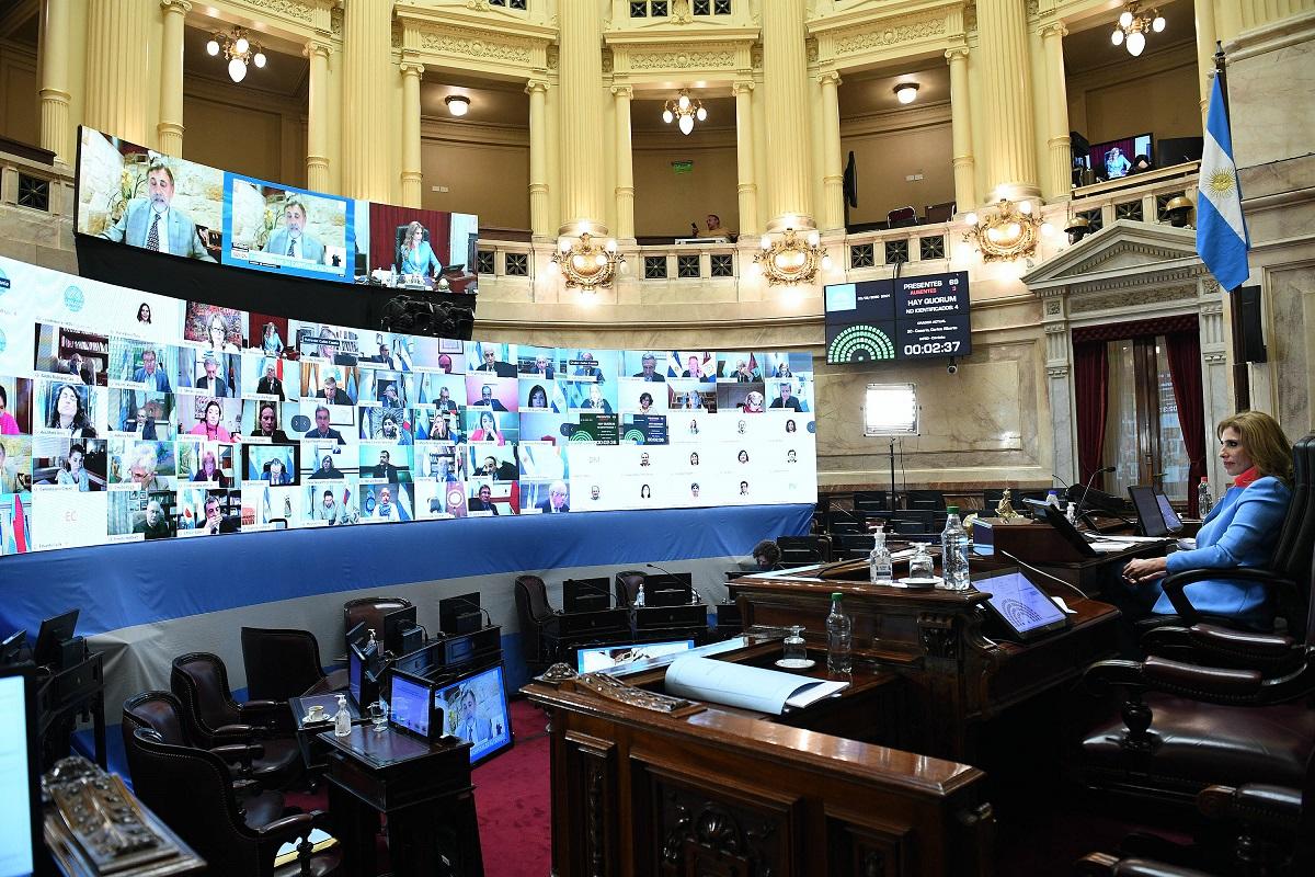 sesion virtual senado 3 septiembre 2020