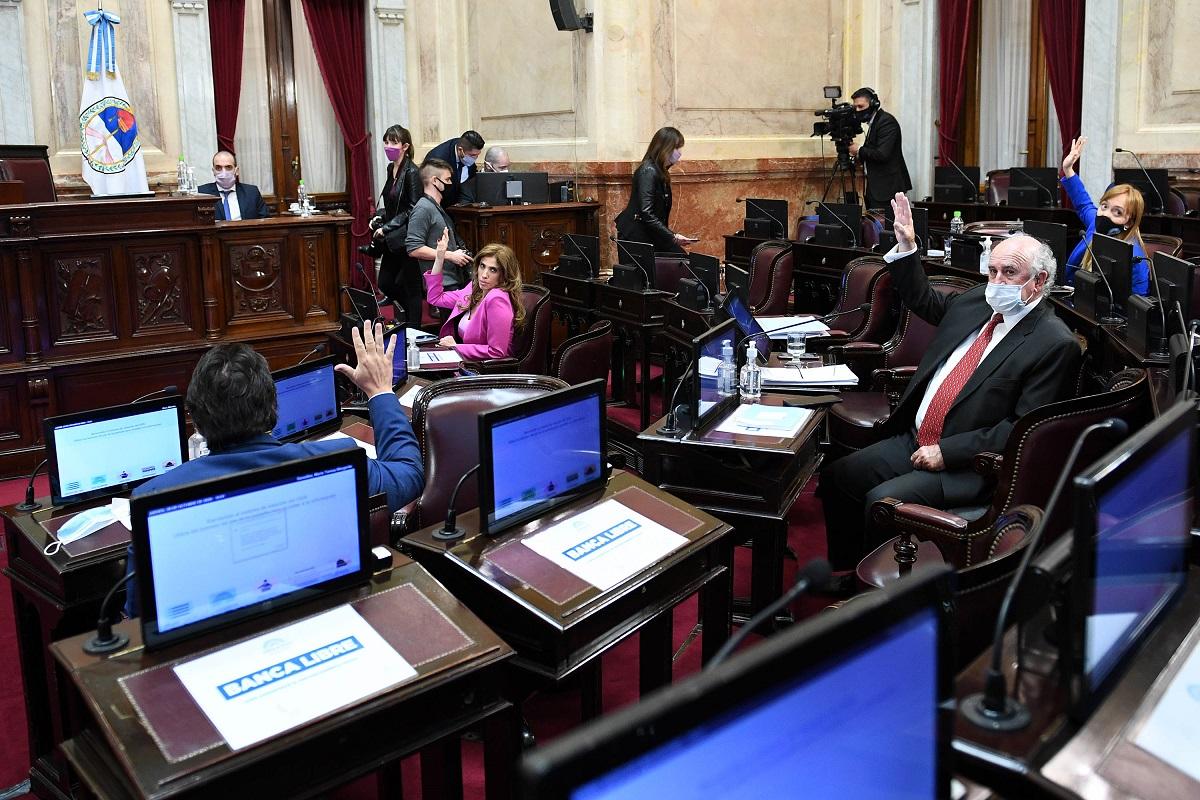 senadores oficialismo sesion 29 octubre 2020