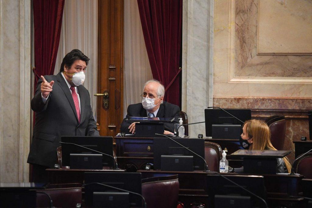 sesion senado 2 octubre sagasti taiana closs