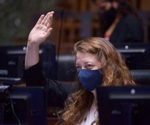 Debatirán en una audiencia la designación de Muiños como Defensora del Pueblo