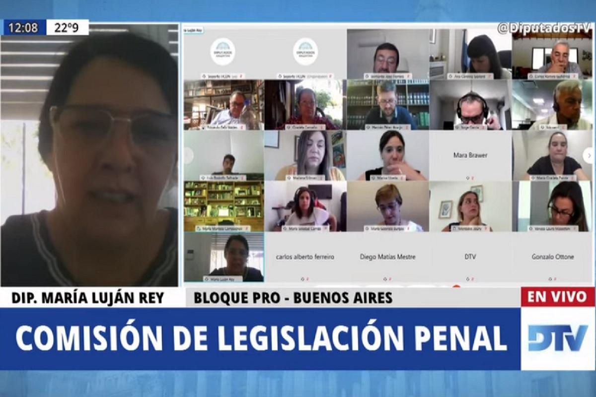 comision legislacion penal diputados 6 noviembre 2020