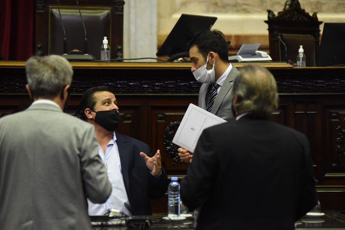 plenario comisiones diputados formula de movilidad casaretto cacace
