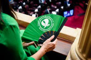Los puntos principales del proyecto de aborto que aprobó el Senado