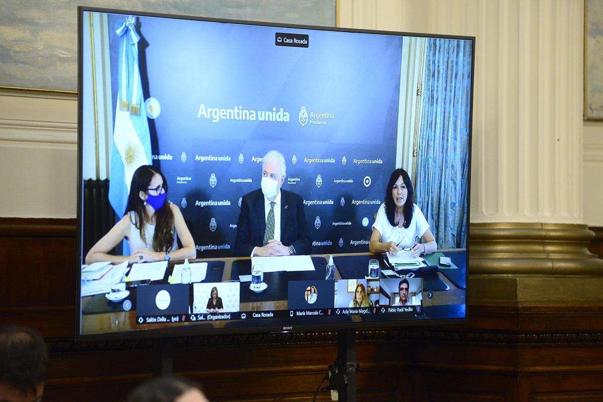 gines gonzalez garcia elizabeth gomez alcorta vilma ibarra plenario proyecto aborto legal