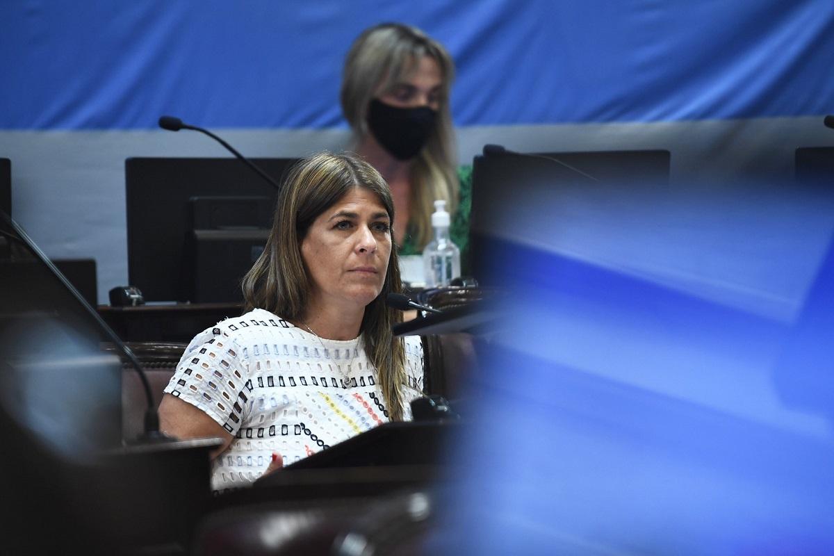 guadalupe tagliaferri sesion senado 10 diciembre 2020