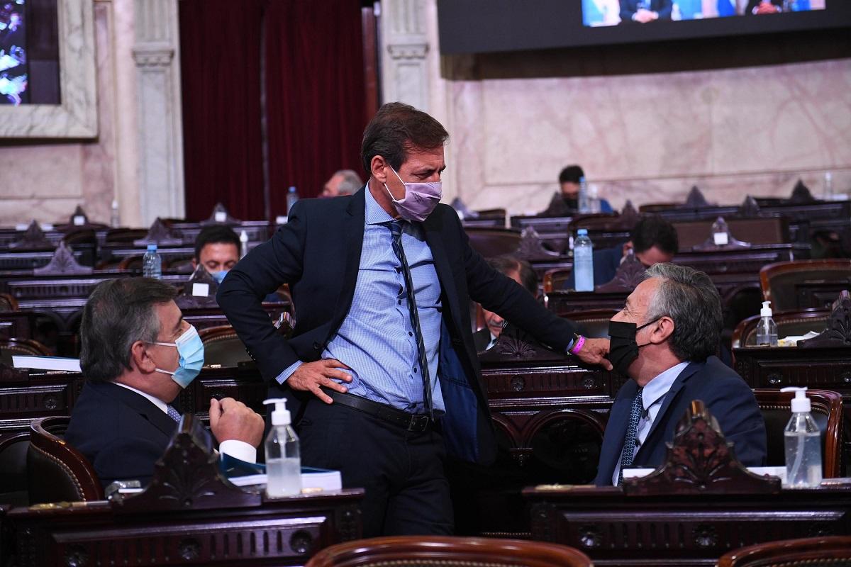 naidenoff negri cornejo asamblea legislativa 2021