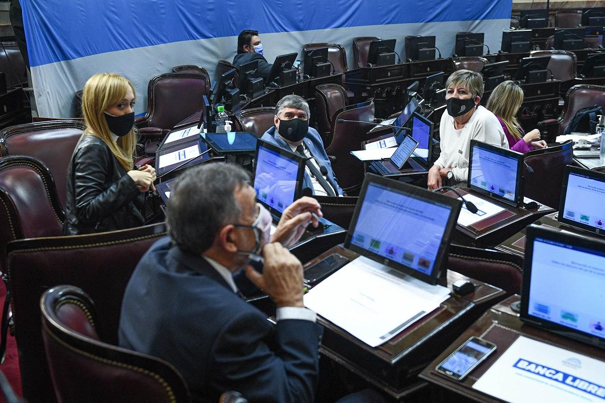 senadores frente de todos sesion senado 20 mayo 2021