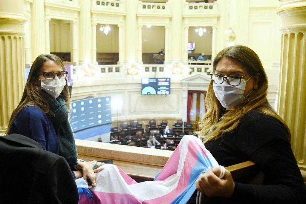 elizabeth gomez alcorta sancion ley cupo trans