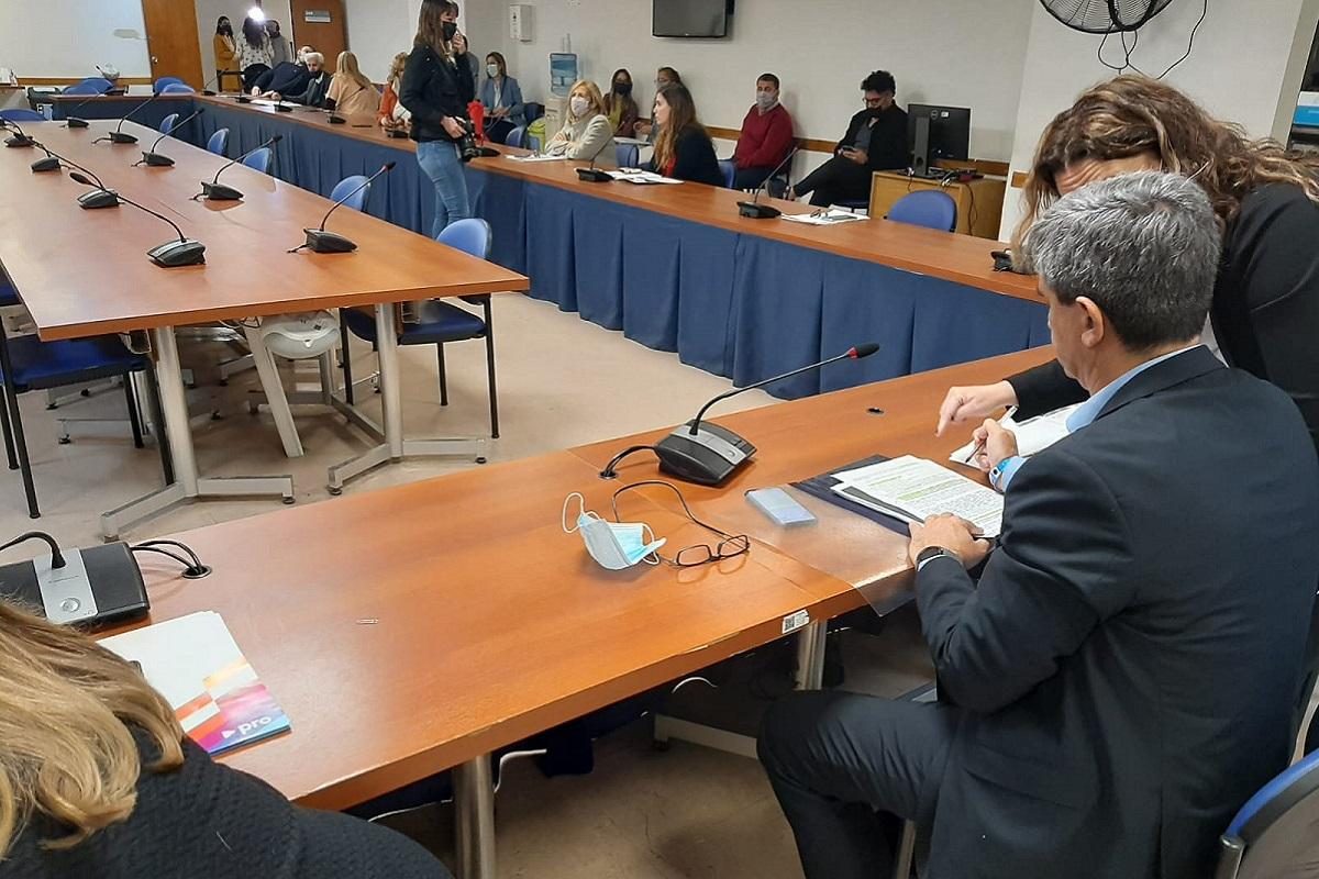 pablo yedlin comision salud 6 octubre 2021