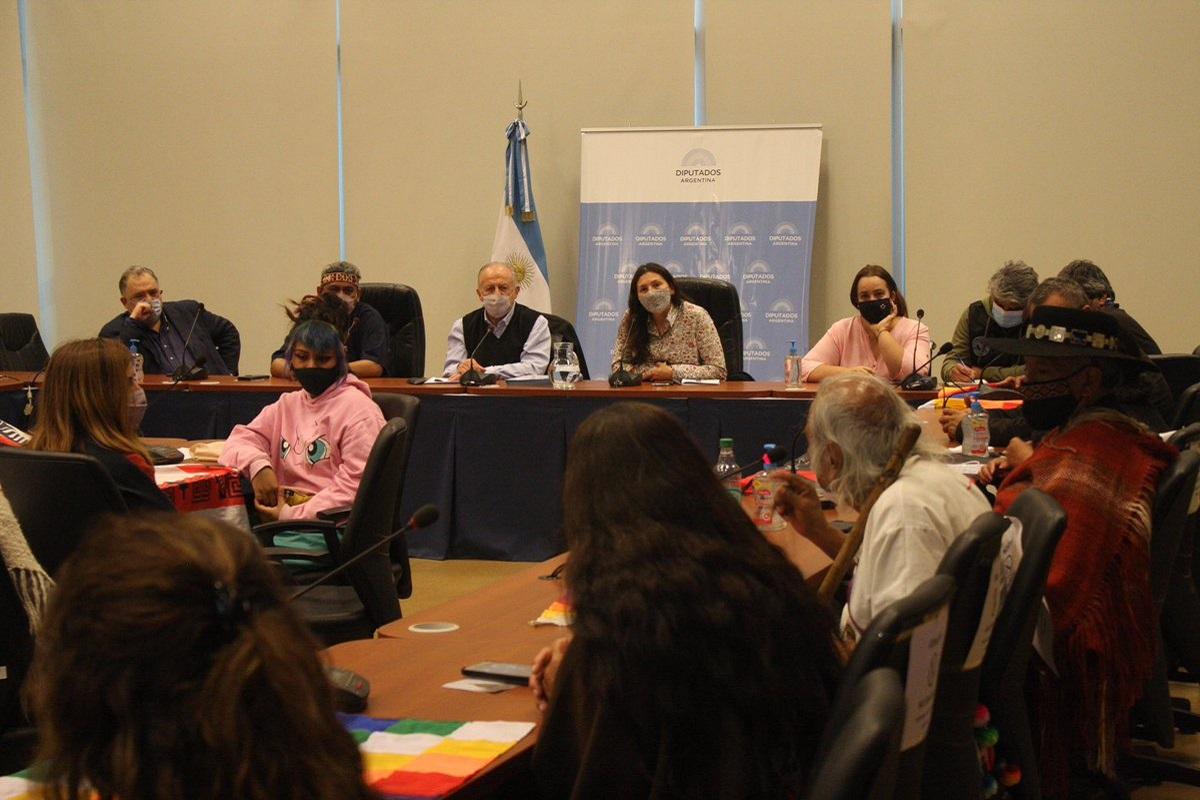 reunion diputados frente de todos pueblos originarios prorroga ley de tierras